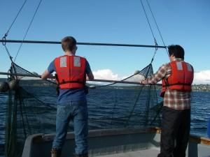 FISH 450 students sampling fishes in Lake Washington